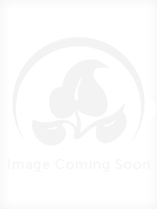 Reference Charts and Card Set (5 Count)