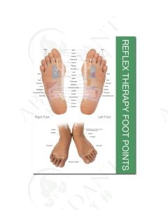 Reflex Point Foot and Hand Chart