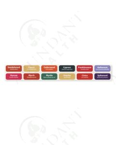 """12 Oils of Ancient Scripture Rectangle Labels: 1-1/4"""" x 1/2"""" for Sample Vials (12 Count)"""