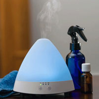 Essential Oil Diffuser Cleaner